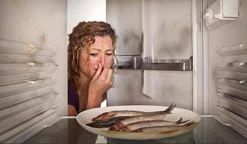 Как убрать запах протухшей рыбы из холодильника